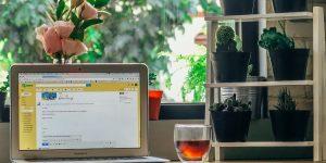 Email marketing B2B Performance_Beautiful Numbers