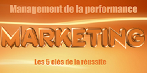 Hive9, USA valide et VisionEdge Marketing viennent de publier les résultats 2017 de leur étude annuelle sur le Management de la Performance Marketing (MPM).